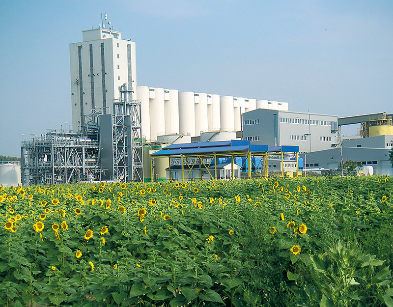 Edible Oil Plants : Edible oil extraction plant china air liquide