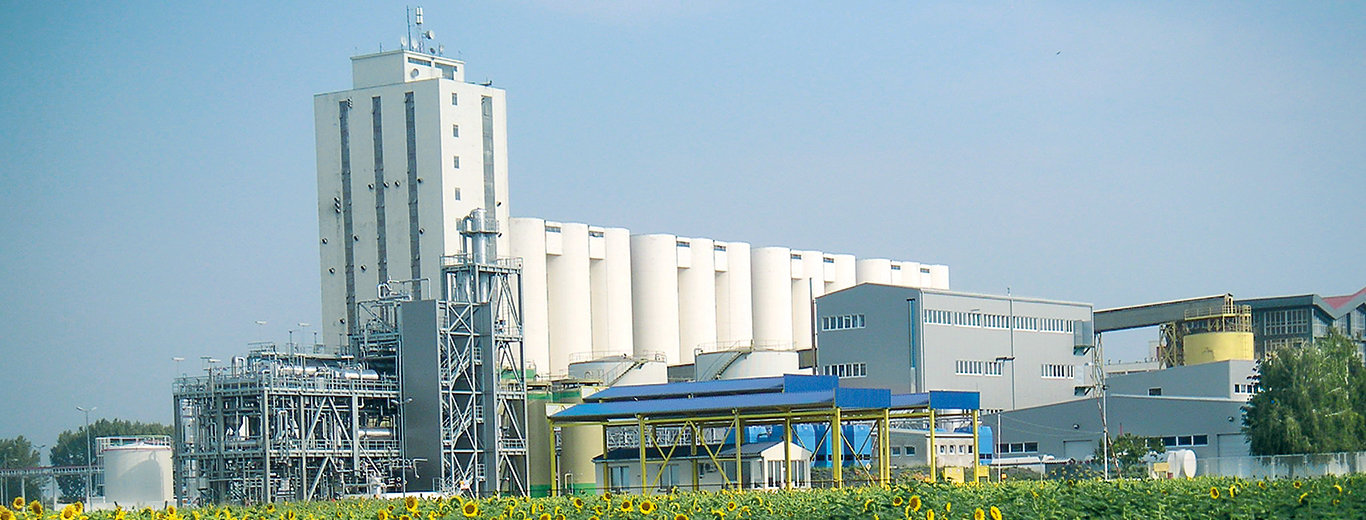 Edible Oil Extraction Plant, China